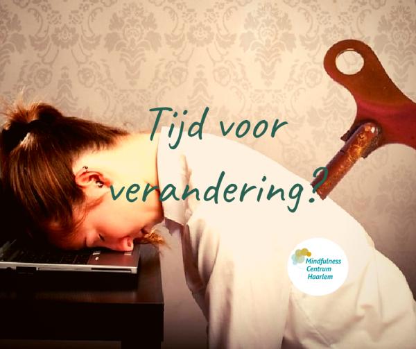 Mindfulness Haarlem
