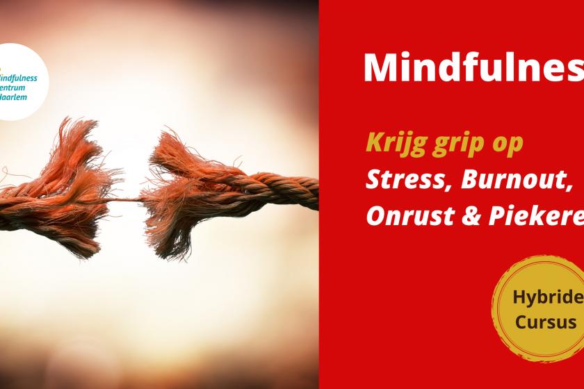 mindfulness haarlem 2021
